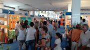 Especial Feria de Cartaya