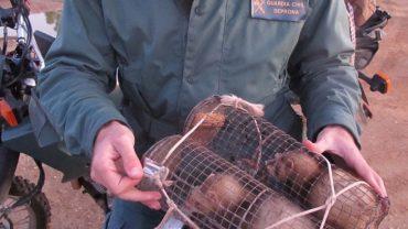 La Guardia Civil sorprende a dos personas que estaban cazando conejos de forma ilegal