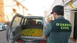 GUARDIA CIVIL ROBO VILLABLANCA