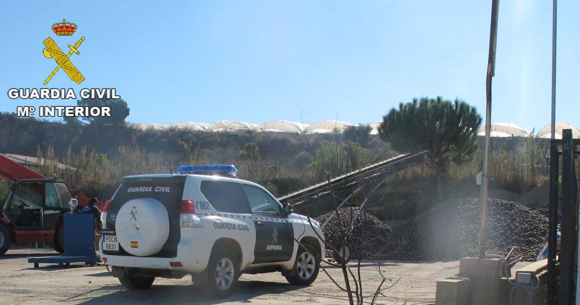 La Guardia Civil interviene en una empresa 18.000 kilos de piñas de procedencia desconocida
