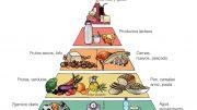 Piramide Alimentación