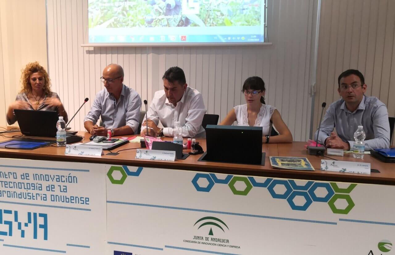 ADESVA presenta los resultados obtenidos con plásticos luminiscentes en cultivos de berries en Huelva