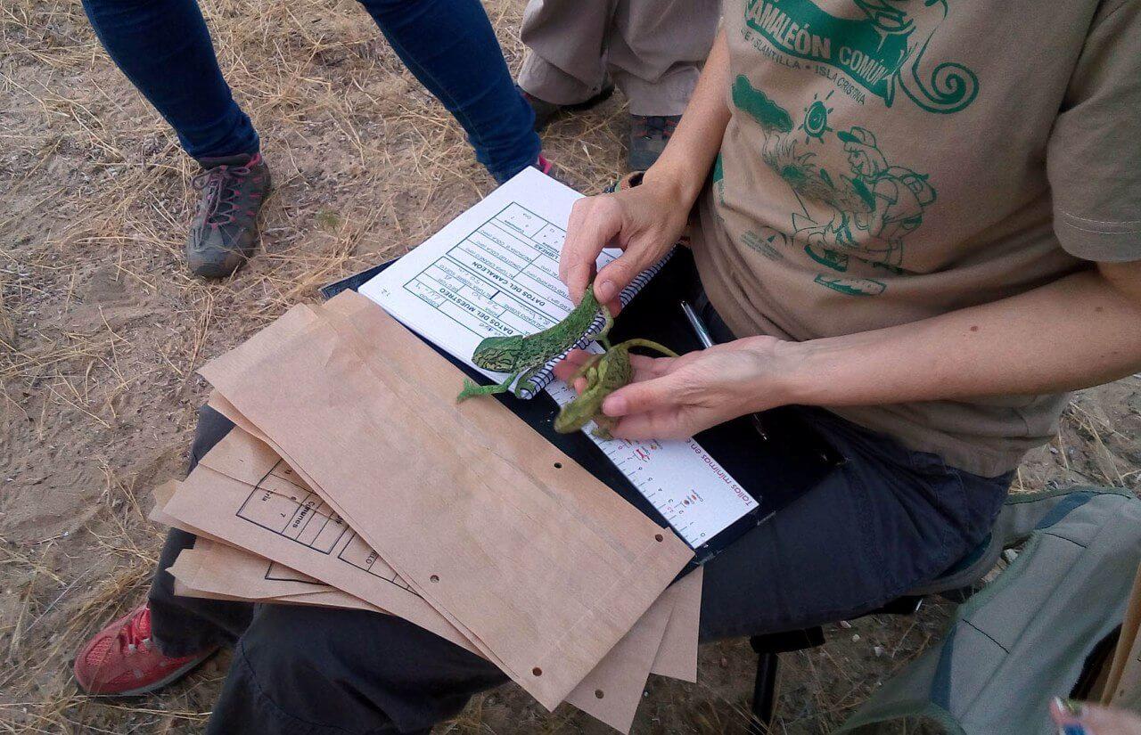 Pepa Acosta incide en la importancia de seguir concienciando en la protección y conservación del sistema dunar