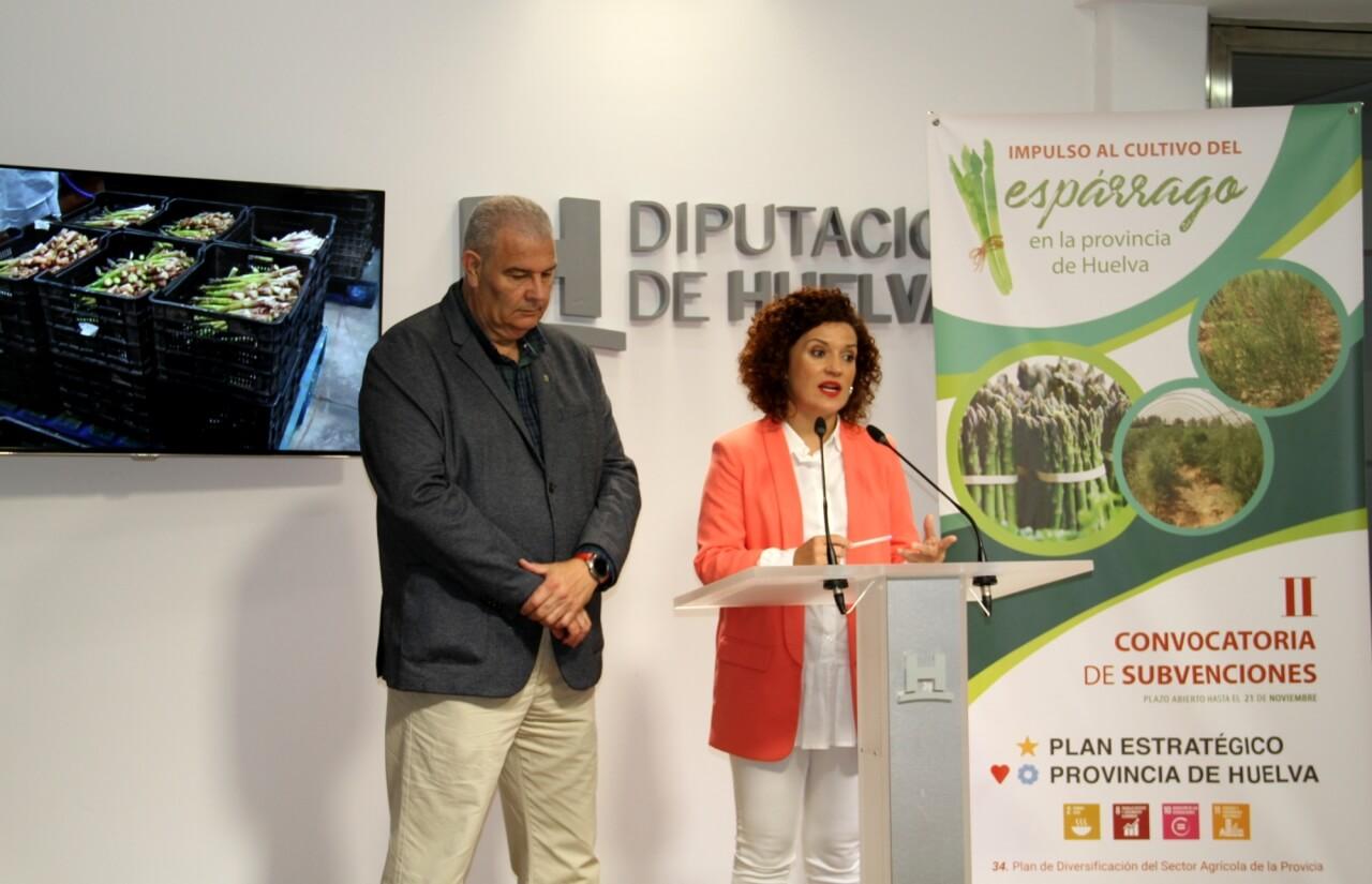 Diputación impulsa el cultivo del espárrago en la provincia como apuesta por la diversificación de la agricultura