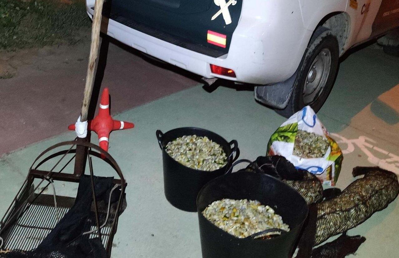 La Guardia Civil interviene 250 kilos de coquinas incautándose las artes para el marisqueo en Ayamonte