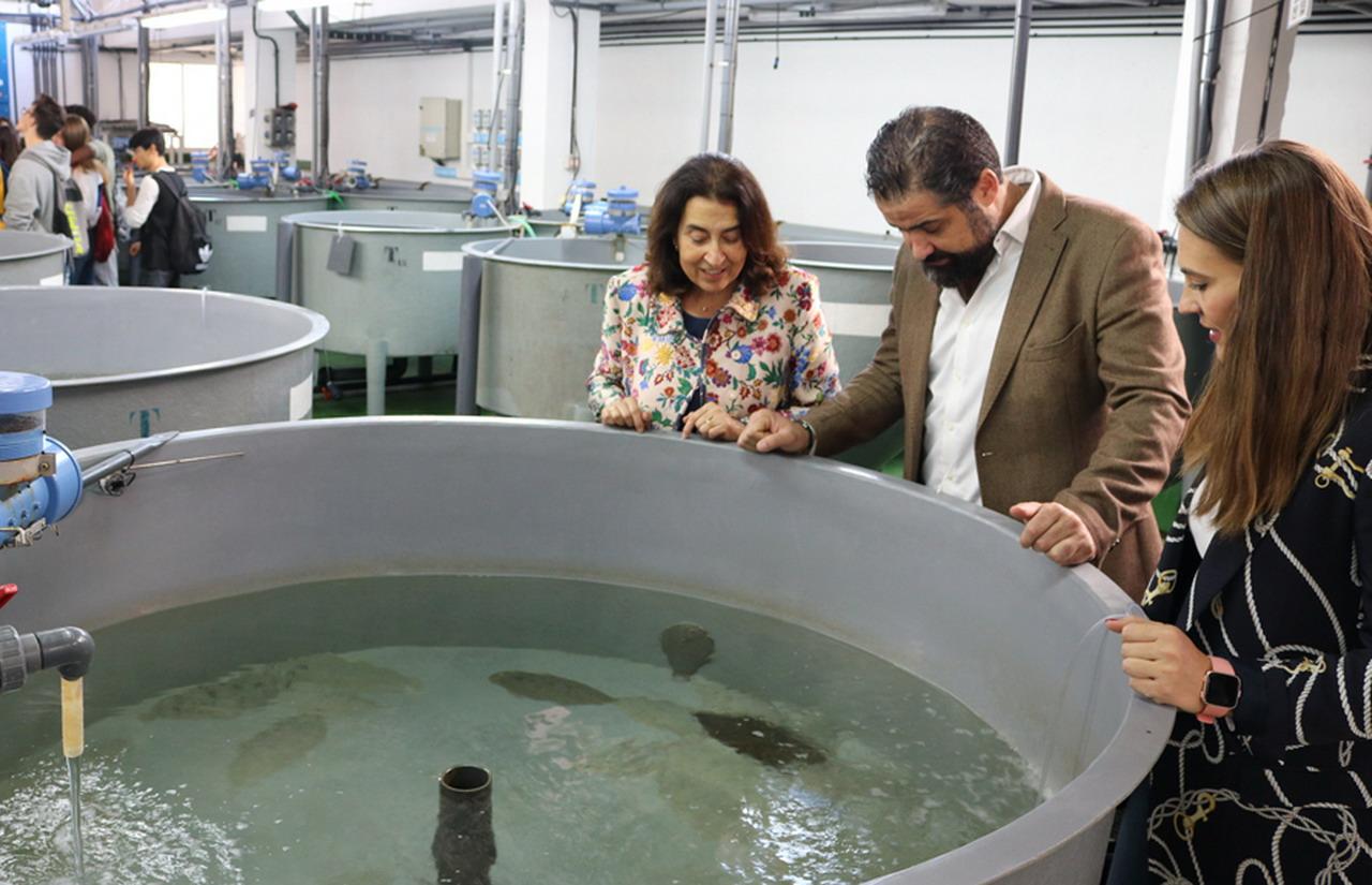 Satisfacción municipal porque la Junta da luz verde al nuevo Centro Andaluz de Control y Calidad de los Recursos Pesqueros en Cartaya