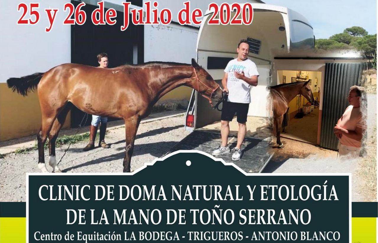Clinic de Doma Natural y Etología de la mano de Toño Serrano