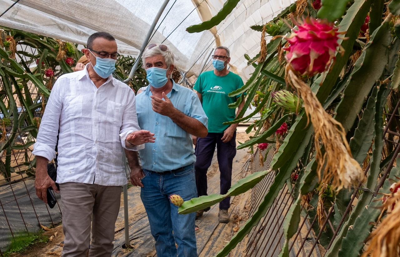 El presidente de Diputación muestra el apoyo de la institución a la Cooperativa Pitaya de Andalucía, impulsada desde la provincia de Huelva