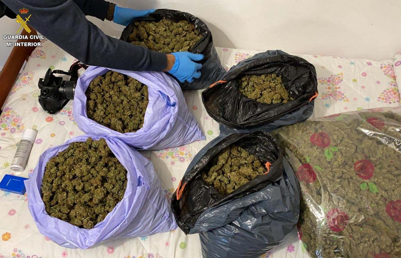 La Guardia Civil localiza varias plantaciones de marihuana en las localidades de Villablanca, Isla Cristina y La Redondela