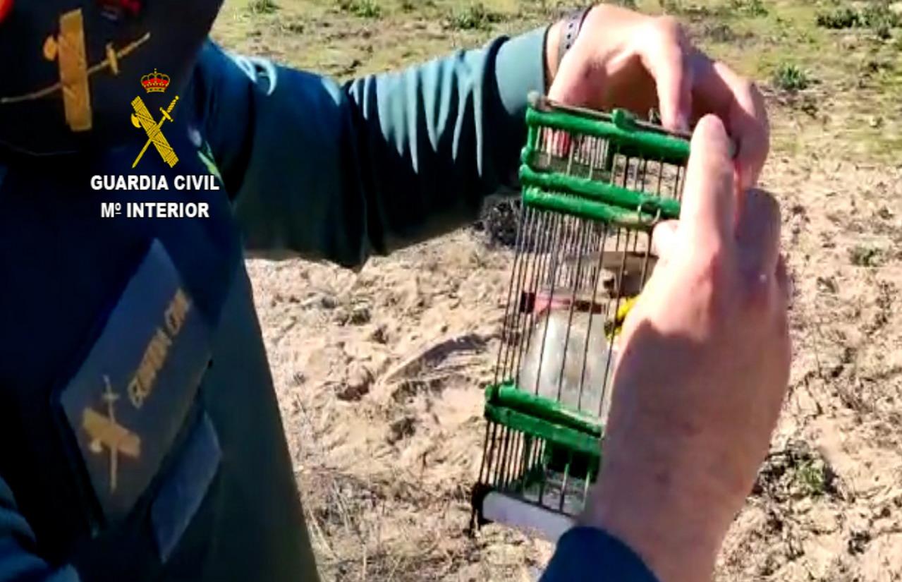 La Guardia Civil sorprende a dos personas cazando aves de manera ilegal en Isla Cristina