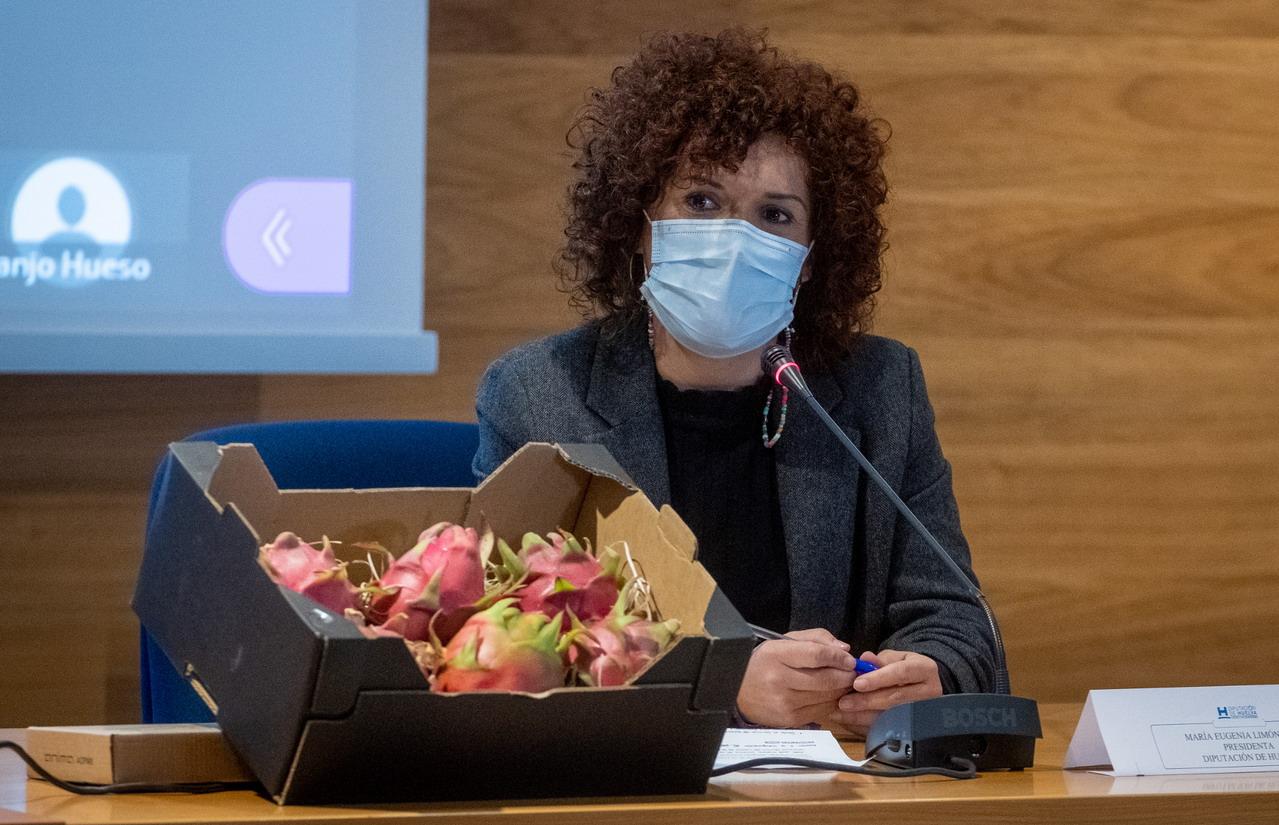 La Diputación de Huelva dedica una jornada técnica a la pitaya, un innovador cultivo en expansión por la provincia