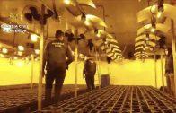 La Guardia Civil desmantela una organización criminal dedicada al tráfico de marihuana en Ayamonte , Villablanca y Lepe