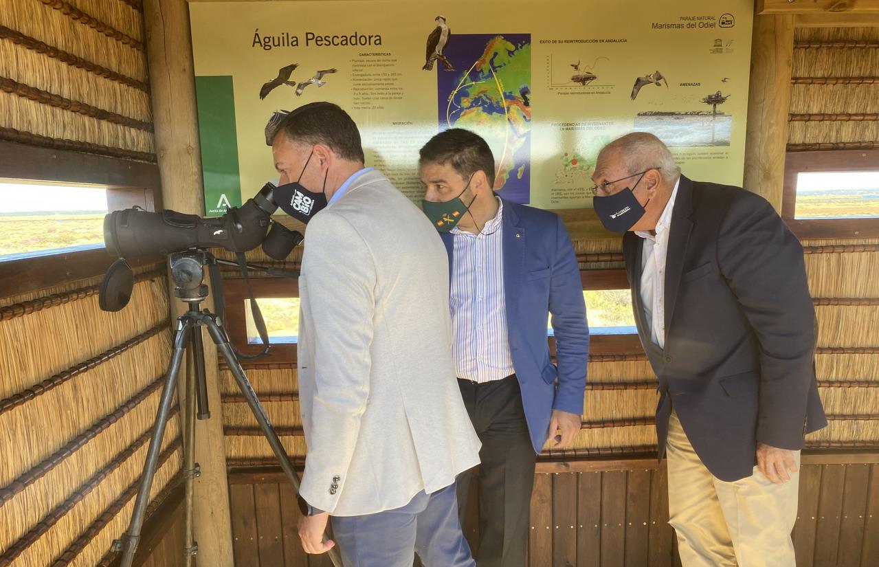 Marismas del Odiel inaugura el Observatorio del Águila en una zona restaurada de Isla de Bacuta